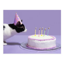 Cat wearing birthday hat blowing out candles on postcard