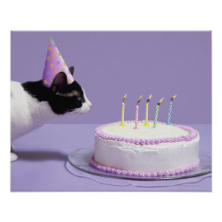 Cat wearing birthday hat blowing out candles on poster
