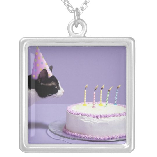 Cat wearing birthday hat blowing out candles on silver plated necklace