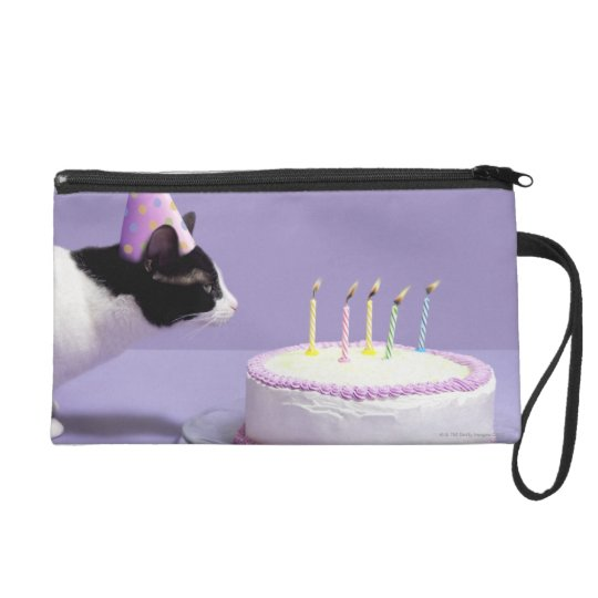 Cat wearing birthday hat blowing out candles on wristlet purse