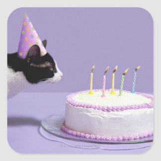 Cat wearing birthday hat blowing out candles square sticker