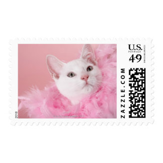Cat wearing feather boa postage stamp