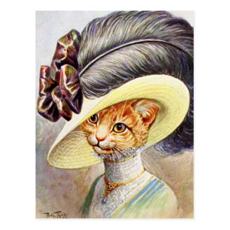 Cat Wearing Feather hat Postcard
