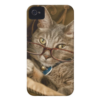 Cat wearing glasses iphone 4 case