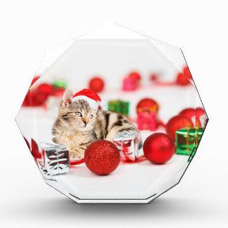 Cat wearing red Santa hat Christmas Ornament Award