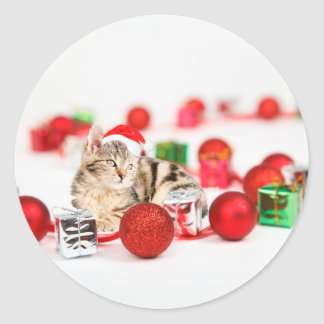Cat wearing red Santa hat Christmas Ornament Classic Round Sticker