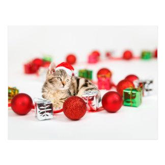 Cat wearing red Santa hat Christmas Ornament Postcard