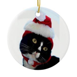 Cat wearing santa hat photograph, BW kitty ornament