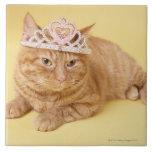 Cat wearing tiara ceramic tiles
