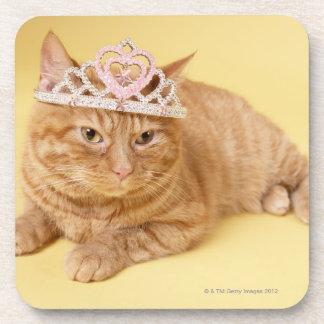 Cat wearing tiara coasters