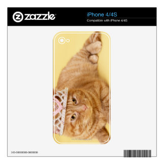 Cat wearing tiara iPhone 4 decal