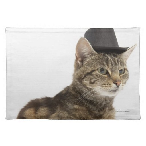 Cat wearing top hat cloth placemat Zazzle : catwearingtophatclothplacemat rbef515ca0b7d4dad96f61bd7d25a34622cfku8byvr512 from www.zazzle.com size 512 x 512 jpeg 33kB