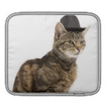 Cat wearing top hat sleeves for iPads