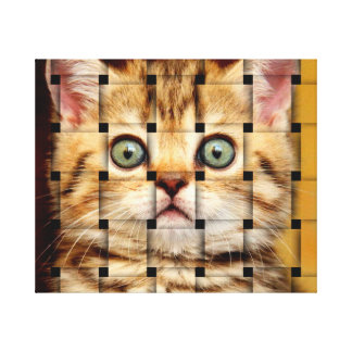 Cat Weave Canvas Print