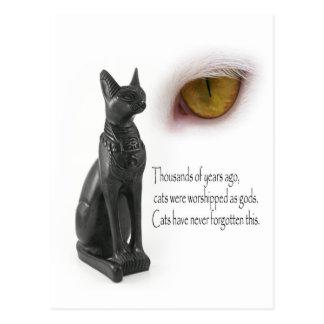 Cat Were Gods Postcard