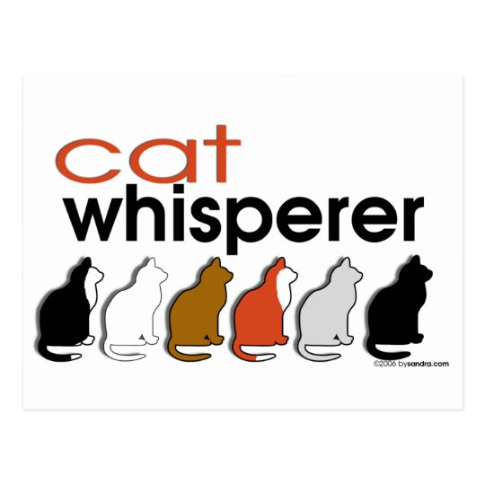 Cat Whisperer Postcard