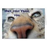 Cat Whispers Happy Birthday Card