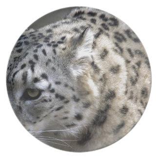 Cat Wild Snow Leopard Spots Destiny Nature Dinner Plate