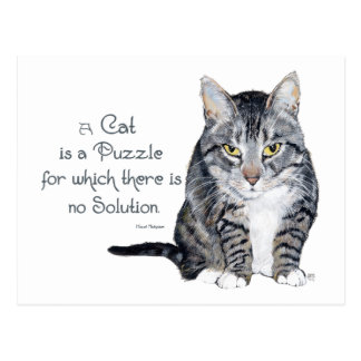 Cat Wisdom - a Cat is a Puzzle Postcard