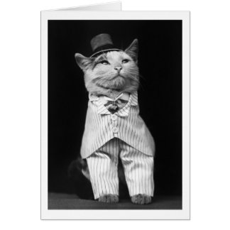 Cat With a Hat, 1906 Greeting Card