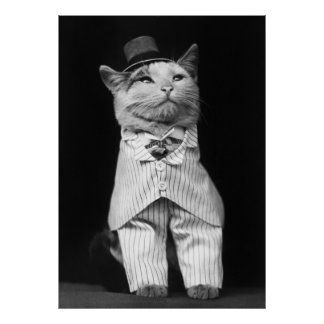 Cat With a Hat, 1906 Posters