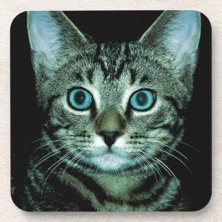 Cat with Aqua Eyes Customize pet house Eye Coaster