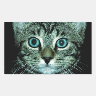 Cat with Aqua Eyes Customize pet house Eye Rectangular Sticker