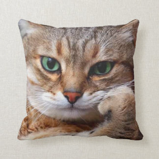 cat with attitude pillow