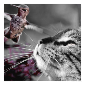 Cat with Bird Magnetic Card