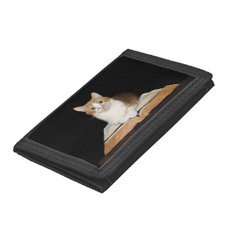 Cat with books trifold wallet