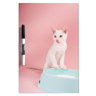 Cat with bowl of milk Dry-Erase board