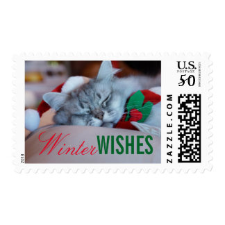 Cat with christmas hat and scarf, sleeping cat postage