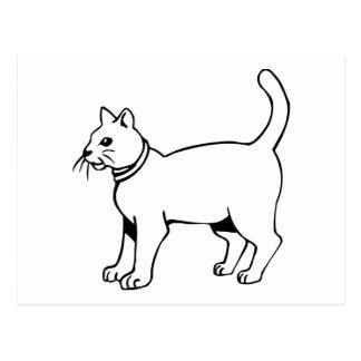 Cat with collar postcard