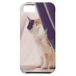 Cat with curtains iPhone SE/5/5s case