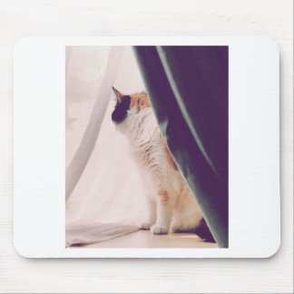 Cat with curtains mouse pad