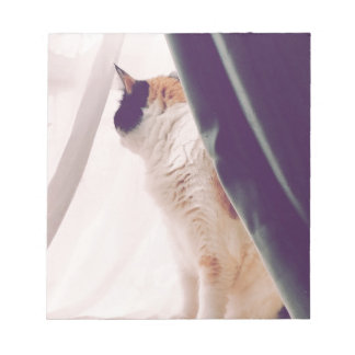 Cat with curtains note pad