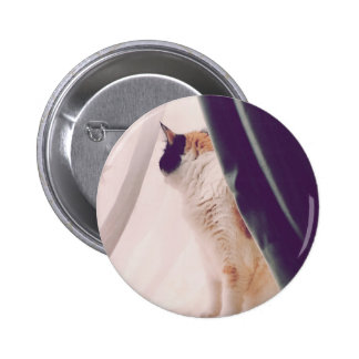 Cat with curtains pinback button