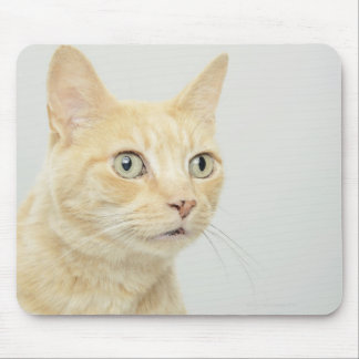 Cat with eyes open wide mouse pad