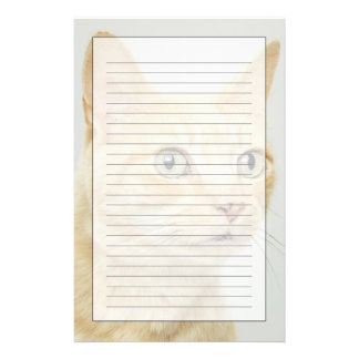 Cat with eyes open wide stationery
