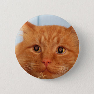 Cat With Fireworks Eyes Pinback Button