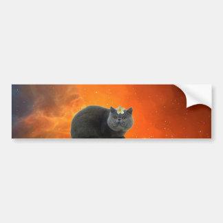 Cat with flower bumper sticker