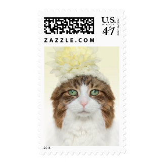 Cat With Flower Hat Postage