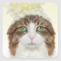 Cat With Flower Hat Square Sticker