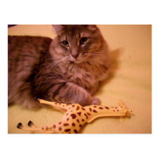 cat with giraffe postcard
