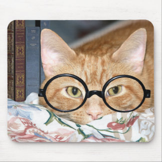 Cat with glasses and books mouse pad