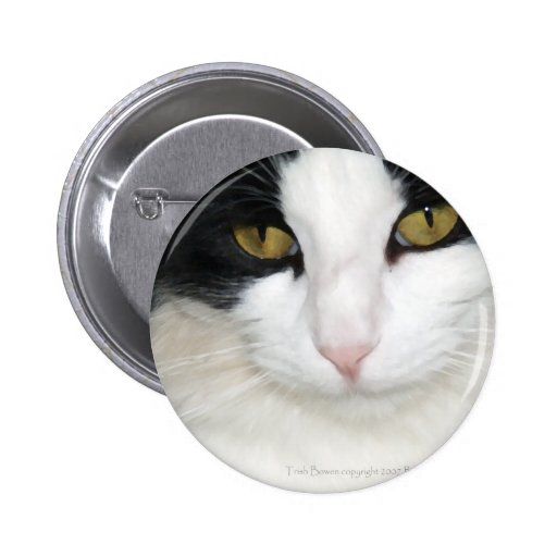 Cat with Golden Eyes Button