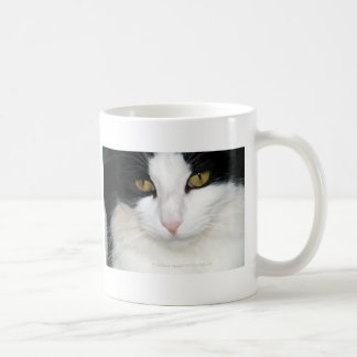 Cat with Golden Eyes Classic White Coffee Mug