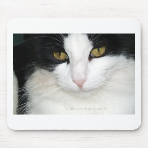 Cat with Golden Eyes Mouse Pad