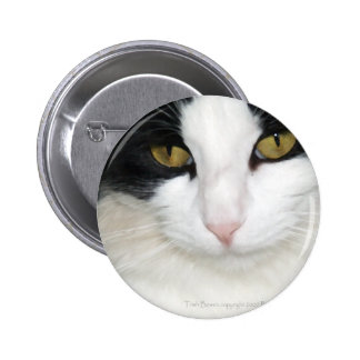 Cat with Golden Eyes Pinback Button