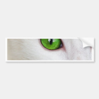 cat with green eyes bumper stickers
